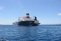 Dịch vụ Logistics & khai thuê hải quan