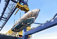 Project cargo, OOG, reefer cont and bulk cargo